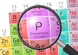 Phosphorus from Periodic Table of the Elements with magnifying glass